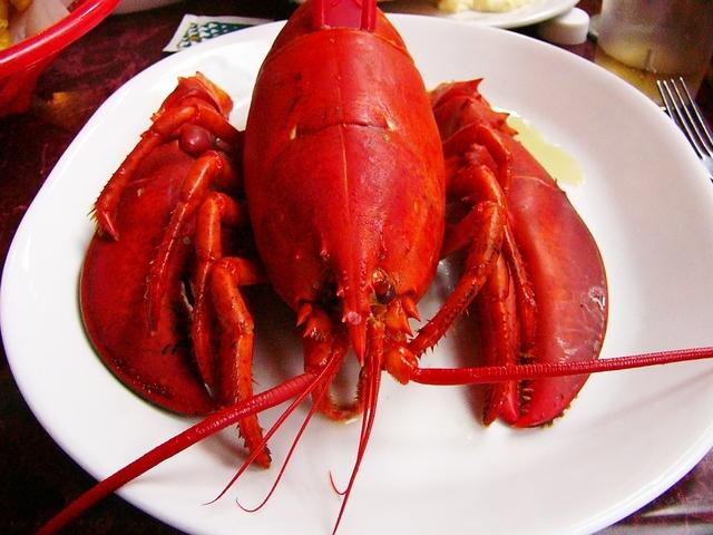 Lobster Sun Tan